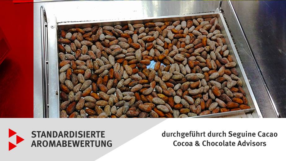 Aromabewertung Kakaobohnen